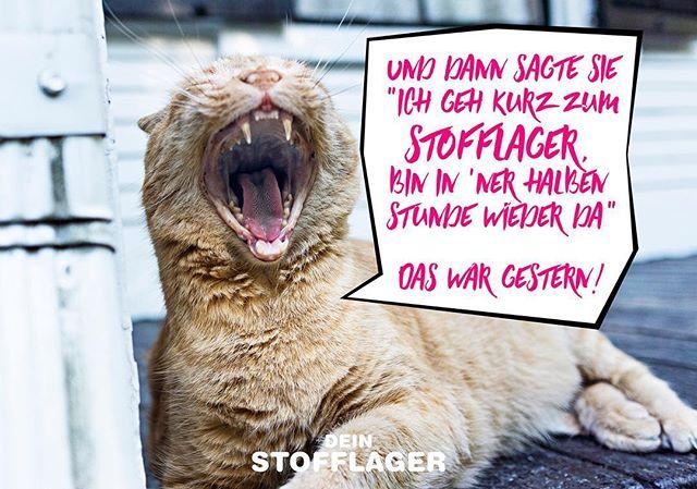 Nur ganz kurz... 😇🤷🏼♀️⠀#stoffliebe #stoffladen #griesheim #darmstadt
