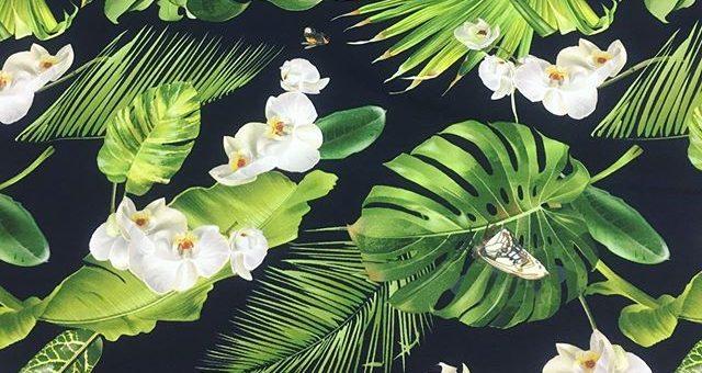 Zum Träumen schön – Tropischer Paradis 🥰🦜 Schöne Digital Jersey Stoffe #nähen #stoffe #fabrics #digitaljersey #jersey #stoffladen #diy #tropisch #papagei #orchidee