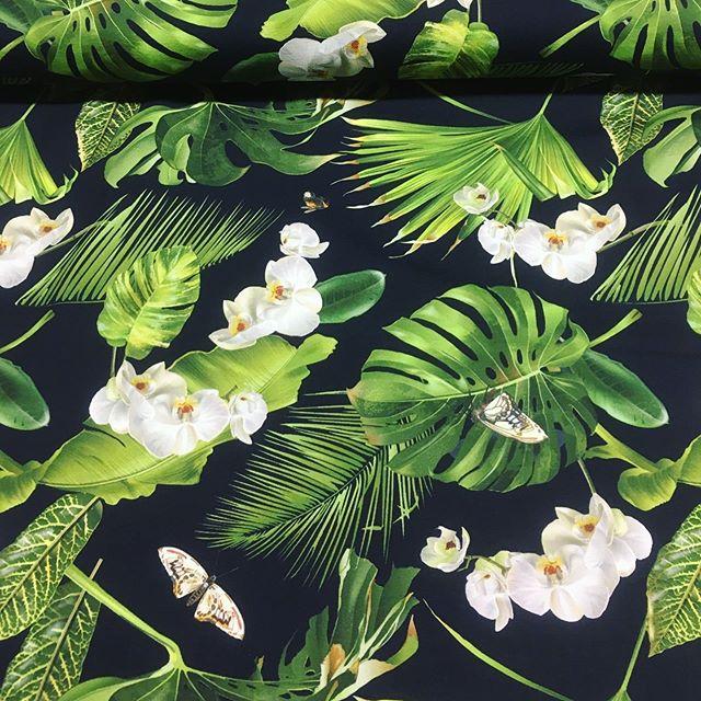 Zum Träumen schön - Tropischer Paradis 🥰🦜 Schöne Digital Jersey Stoffe #nähen #stoffe #fabrics #digitaljersey #jersey #stoffladen #diy #tropisch #papagei #orchidee